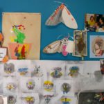 An inspiration wall behind Momoko's desk.